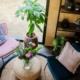 vakantie-friesland-vakantiepark-Ljeppershiem-tiny house-De-Pols-04