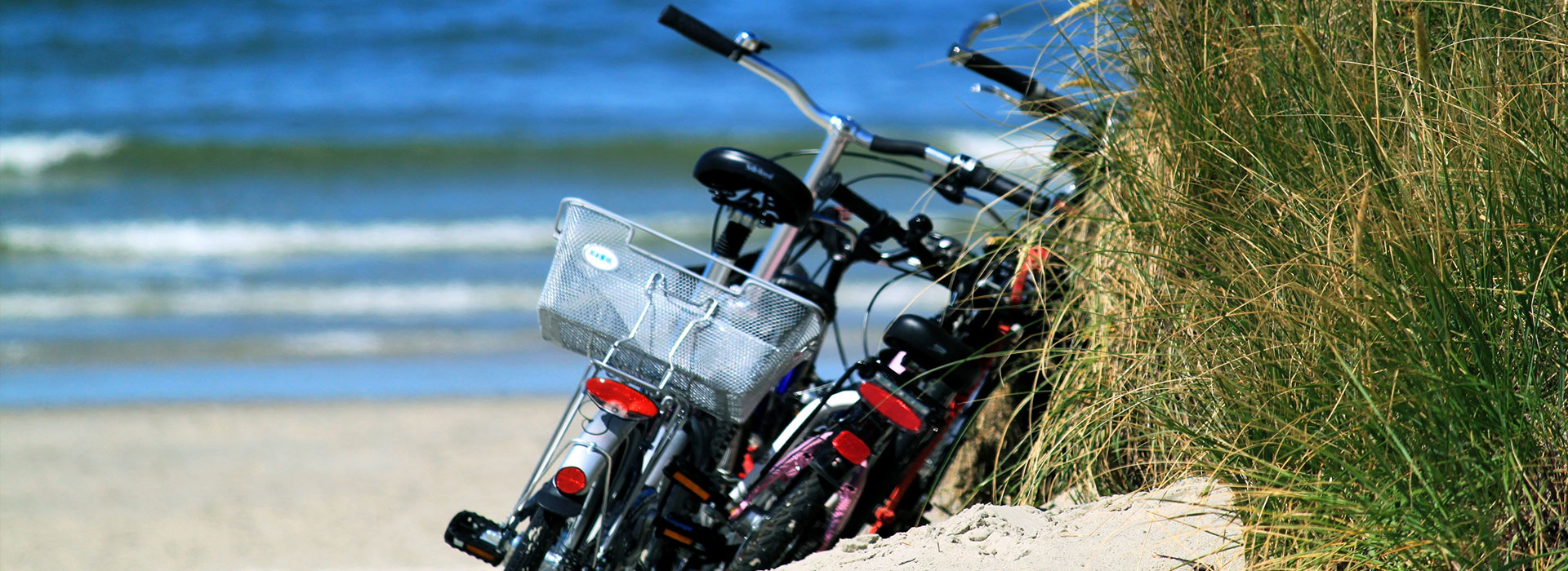 Dagtrip-Schiermonnikoog-vakantie-in-Friesland-Ljeppershiem-vakantiepark-fietsen