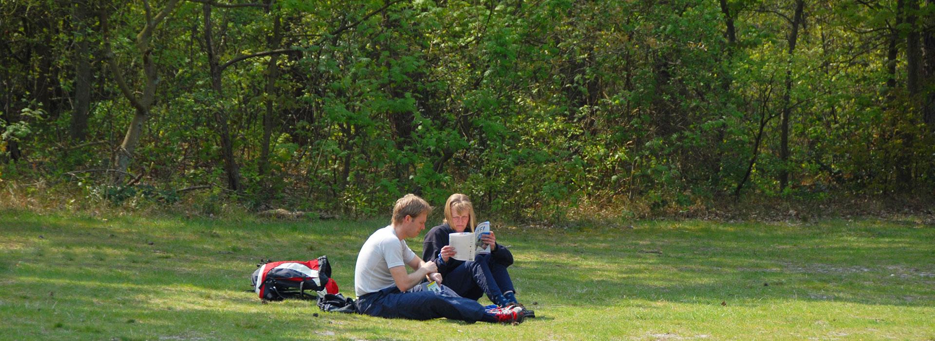 Dagtrip-Schiermonnikoog-vakantie-in-Friesland-Ljeppershiem-vakantiepark-picknicken