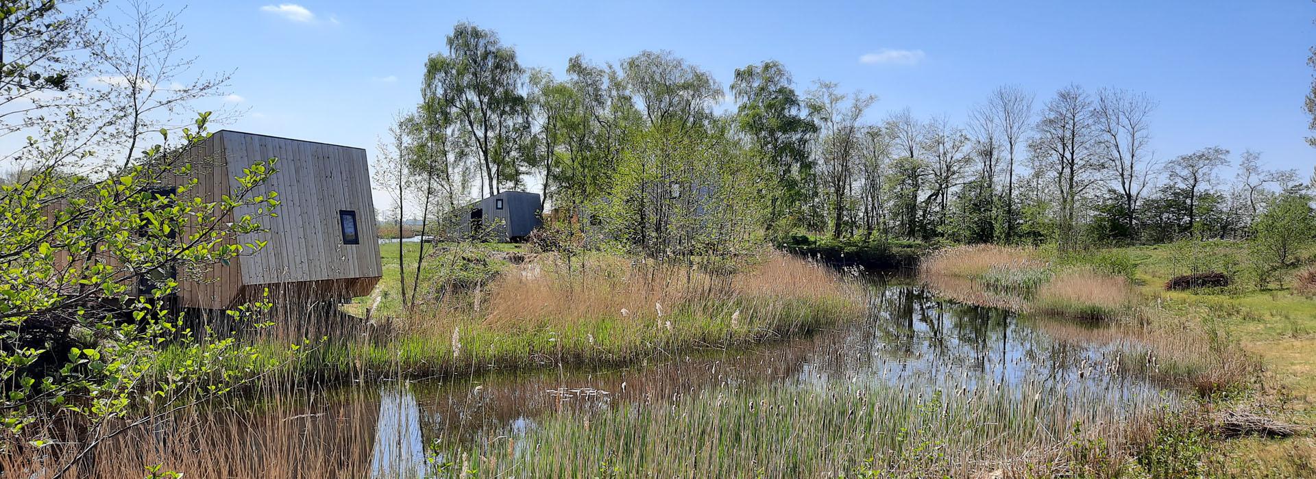 vakantie - friesland - vakantiepark - Ljeppershiem - tiny house - tuinhuisje - natuur